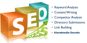 Seo Expert Services Explanation