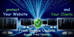 Protect Your Website From Google Update also Google Fred Update
